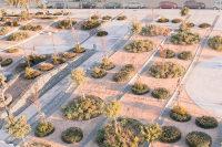 Green_roof-Caja_Badajoz-Cjcpaisaje-02