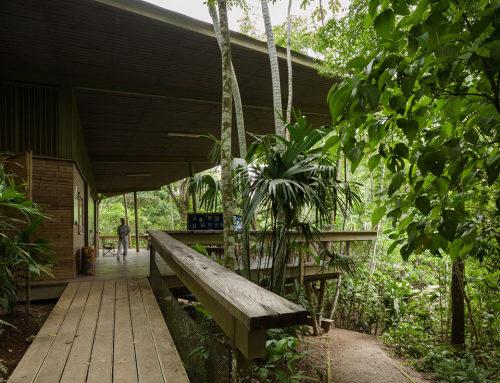 巴拿马雨林探索中心和观测塔