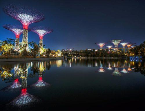 """新加坡""""海湾花园""""景观设计"""