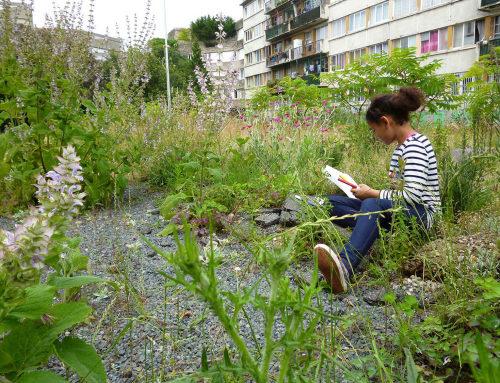 临时花园-Jardin des Joyeux