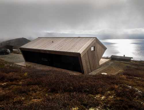 The Hooded Cabin