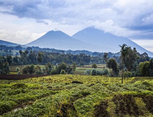 RWANDA CHAPEL: Call for entries