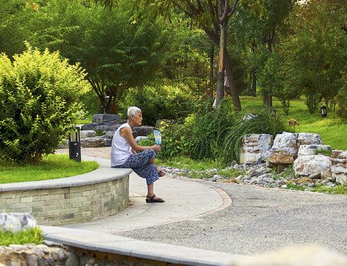 乡愁设计 – 低成本回迁社区生态景观营造