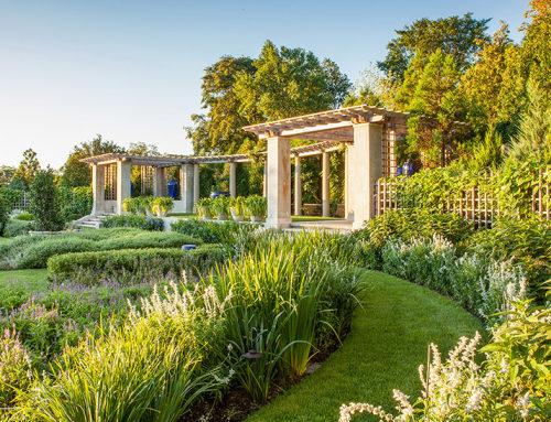 2018 ASLA居住设计荣誉奖:蓝色花园的新生,美国纽波特