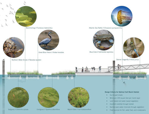006-2018-asla-research-award-of-honor-urban-aquatic-health-integrating-new-technologies-and-resiliency-into-floating-wetlands-by-ayers-saint-gross