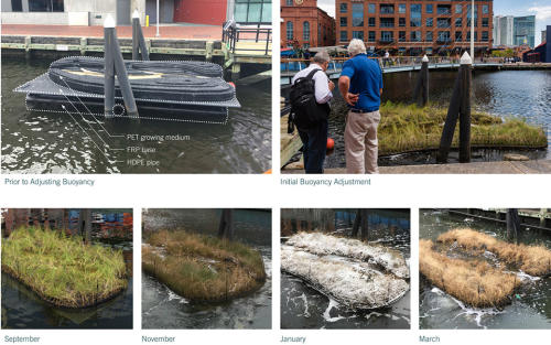 015-2018-asla-research-award-of-honor-urban-aquatic-health-integrating-new-technologies-and-resiliency-into-floating-wetlands-by-ayers-saint-gross
